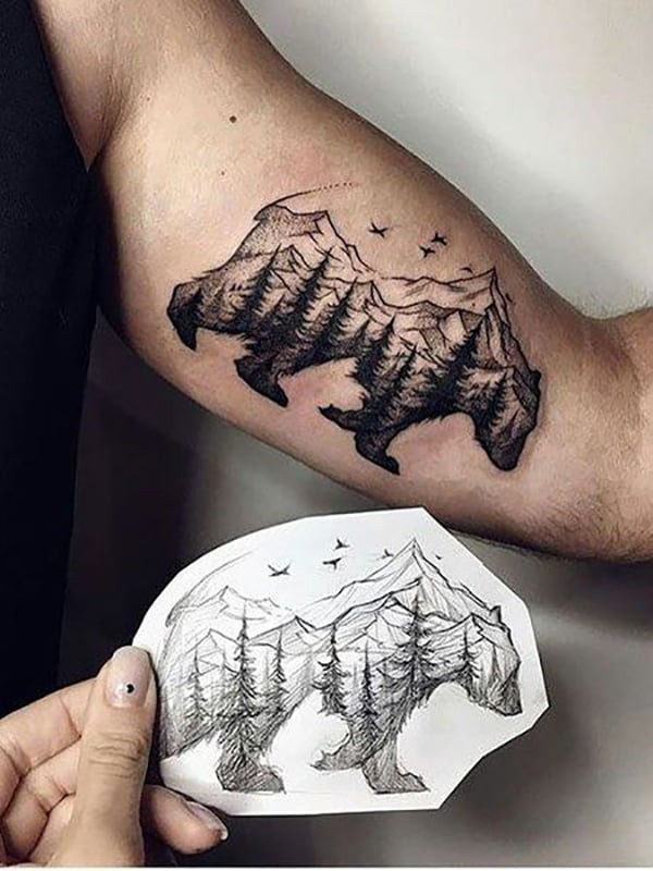Mountains and Trees Within a Bear