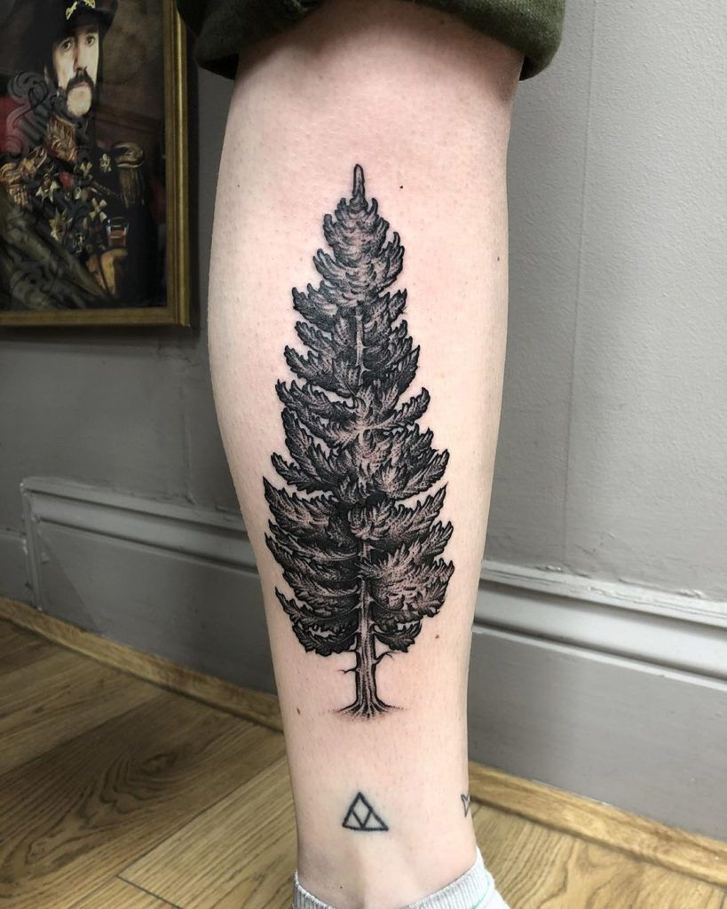 Defined Calf with Dramatic Tree Tat