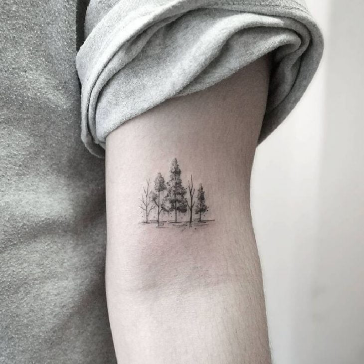 The Forest Travels with Me