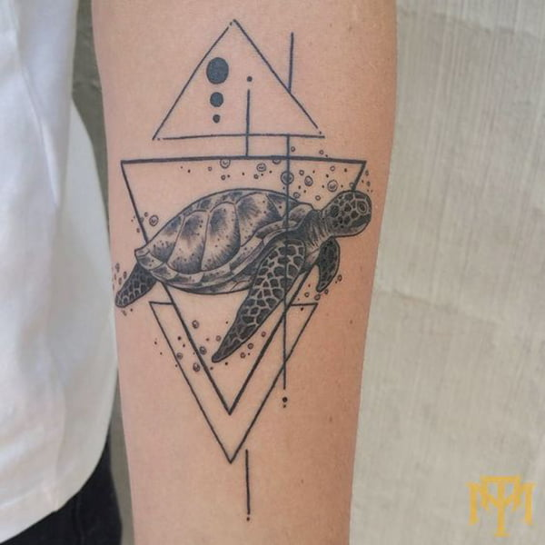 Sea Turtle Framed by Triangles